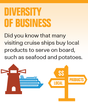 Diversity-of-Business-Button