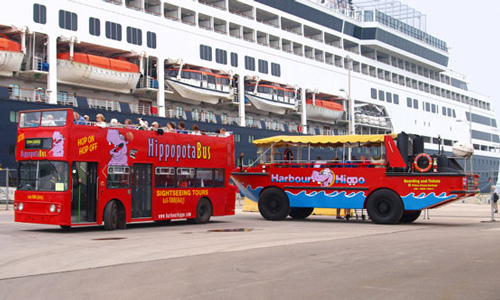 Harbour Hippo: Land and Sea Duck Boat Tour