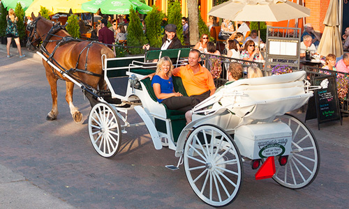 John Sylvester Carriage Rides